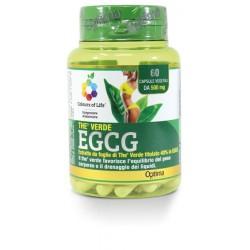 Thè Verde EGCG 60 capsule...