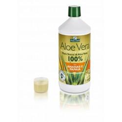 Aloe Vera Succo Ananas e...