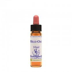 Healing Herbs Wild Oat 10...
