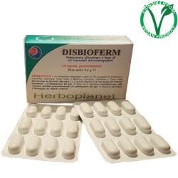 Disbioferm 9,60 g, 24...